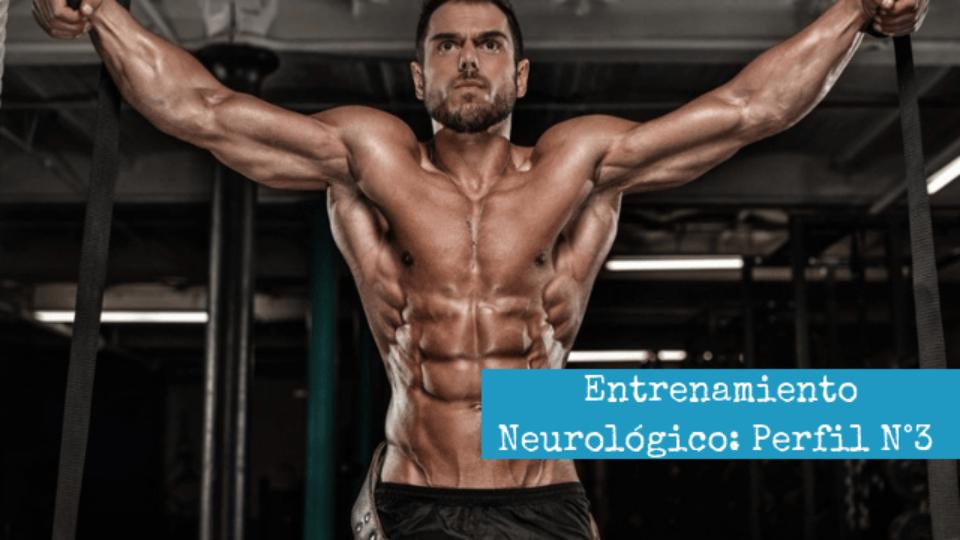 Entrenamiento Neurologico_ Perfil N°3